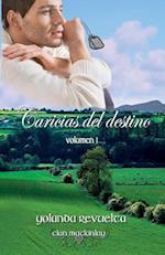 Caricias del Destino af Yolanda Revuelta