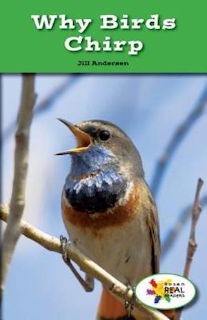 Bog, paperback Why Birds Chirp af Jill Andersen