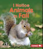 I Notice Animals in Fall (First Step Nonfiction)