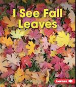 I See Fall Leaves (First Step Nonfiction)