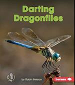 Darting Dragonflies (First Step Nonfiction)