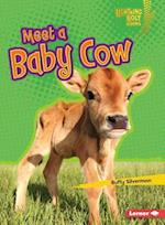 Meet a Baby Cow (Lightning Bolt Books)