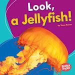 Look, a Jellyfish! (Bumba Books I See Ocean Animals)