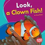 Look, a Clown Fish! (Bumba Books I See Ocean Animals)