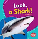Look, a Shark! (Bumba Books I See Ocean Animals)