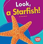 Look, a Starfish! (Bumba Books I See Ocean Animals)