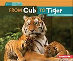 From Cub to Tiger (Start to Finish)