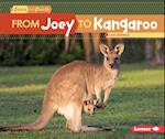 From Joey to Kangaroo (Start to Finish)