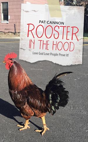 Bog, paperback Rooster in the Hood af Pat Cannon