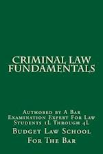 Criminal Law Fundamentals