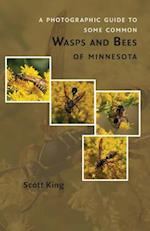 A Photographic Guide to Some Common Wasps and Bees of Minnesota