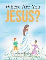 Where Are You Jesus?