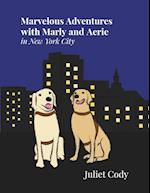 Marvelous Adventures with Marly and Aerie in New York City
