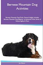 Bernese Mountain Dog Activities Bernese Mountain Dog Tricks, Games & Agility. Includes af Joe Gibson