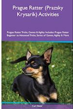 Prague Ratter (Prazsky Krysarik) Activities Prague Ratter Tricks, Games & Agility. Includes af Carl Slater