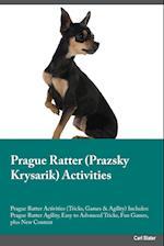 Prague Ratter Prazsky Krysarik Activities Prague Ratter Activities (Tricks, Games & Agility) Includes af Kevin Bailey