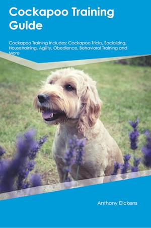 Bog, paperback Cockapoo Training Guide Cockapoo Training Includes af Sam King