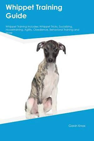 Bog, paperback Whippet Training Guide Whippet Training Includes af Gavin Knox