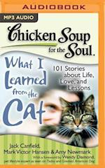 Chicken Soup for the Soul What I Learned from the Cat (CHICKEN SOUP FOR THE SOUL)