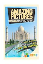 Amazing Pictures and Facts about the Taj Mahal