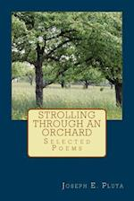 Strolling Through an Orchard