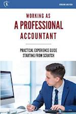 Working as a Professional Accountant