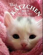 Das Katzchen 2017 Wandkalender (Ausgabe Deutschland)