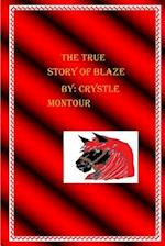 The True Story of Blaze