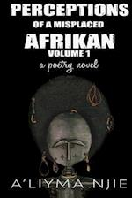 Perceptions of a Misplaced Afrikan