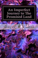 An Imperfect Journey to the Promised Land