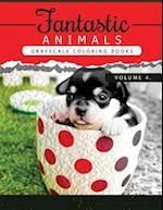 Fantastic Animals Book 4