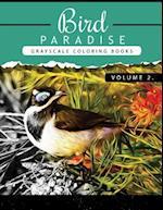 Bird Paradise Volume 2