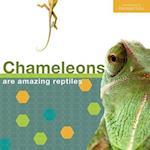 Chameleon - English
