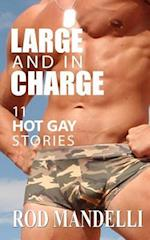 Large and in Charge 11 Hot Gay Stories