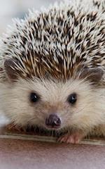 S'Cute Hedgehog Journal af S'Cute Press