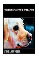 Amazing Collections of Dog Pets