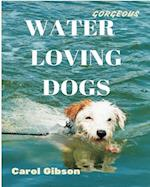 Gorgeous Water Loving Dogs