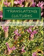 Translating Cultures. Part 4