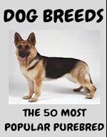 The 50 Most Popular Purebred Dog Breeds