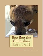 Boo Boo the Chihuahua