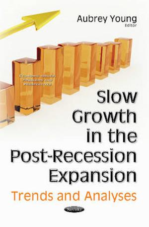 Bog, paperback Slow Growth in the Post-Recession Expansion af Aubrey Young