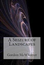 A Seizure of Landscapes