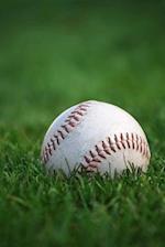 Baseball in the Grass Journal
