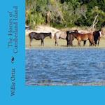 The Horses of Cumberland Island