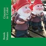 Gnomes in Color