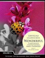 Wonderful Ladybugs and Flowers Books 2