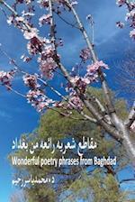 Wonderful Poetry Phrases from Baghdad