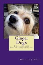 Ginger Dog's
