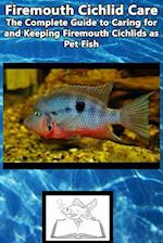 Firemouth Cichlid Care