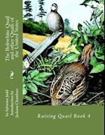 The Bobwhite Quail and Other Quails of the United States